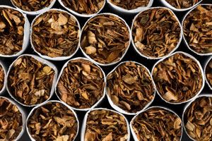 Tobacco Trade: What Distinguishes Chewing Tobacco?