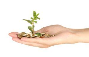 Ökopunktehandel durch gemeinnützige Organisationen nicht immer steuerpflichtig